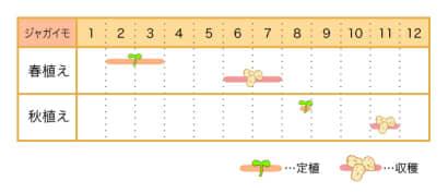 家庭菜園カレンダー ジャガイモ