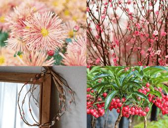 4種類の花