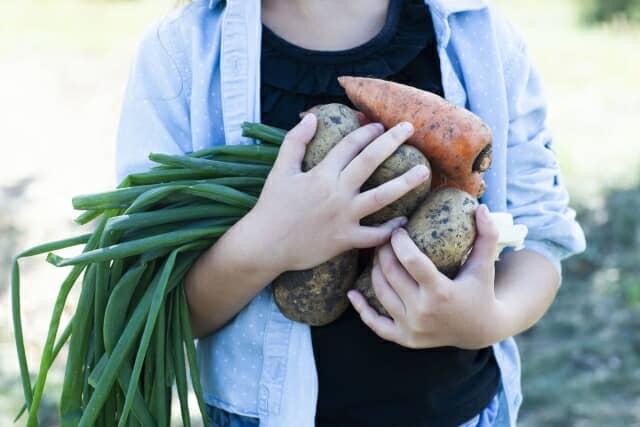 安全な野菜