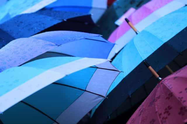 おしゃれな傘立てはどこで買う?人気のインテリアブランド