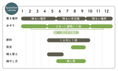 エピフィルム栽培カレンダー
