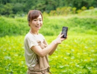病害虫雑草を診断できる、無料スマホ用アプリ「レイミーのAI病害虫雑草診断」が診断対象の作物を拡大!