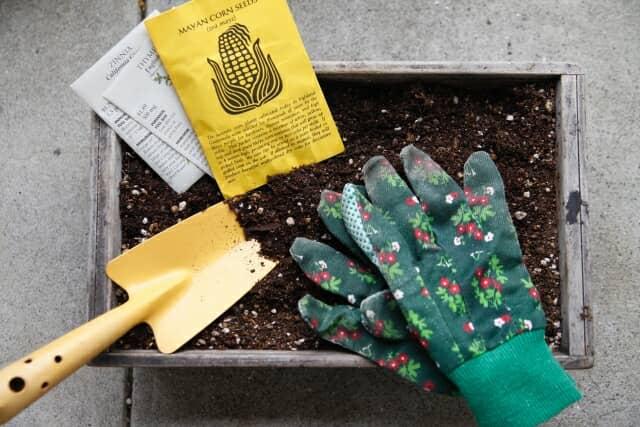 家庭菜園の準備をしているところ