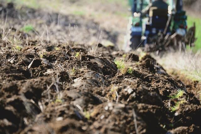 有機質肥料を使用する