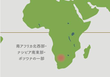 リトープス原産地 地図