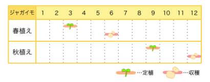 ジャガイモの栽培カレンダー