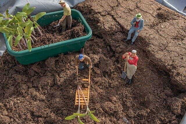 堆肥など有機質肥料を土に投入