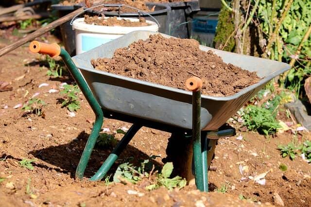 堆肥など有機質肥料を家庭菜園で使用