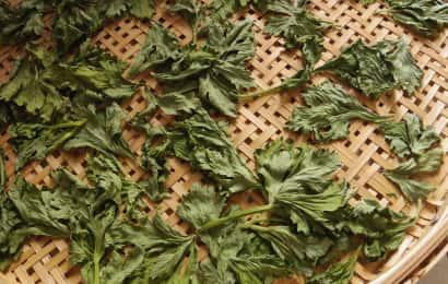ドライセロリの葉