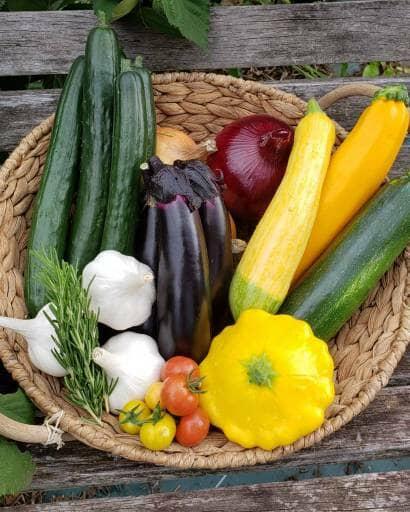 かごに乗った野菜