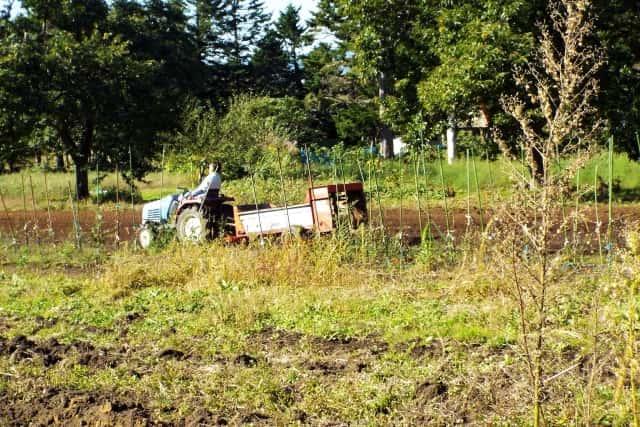 肥料をあげるトラクター