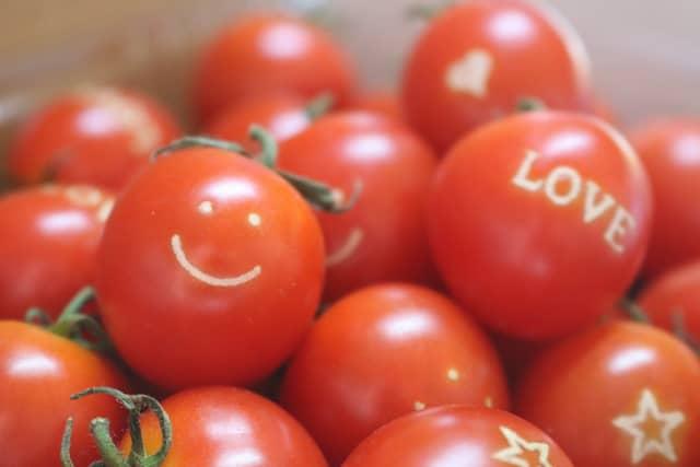 ハピフルトマト