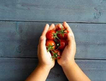 ミニトマトを持つ子どもの手