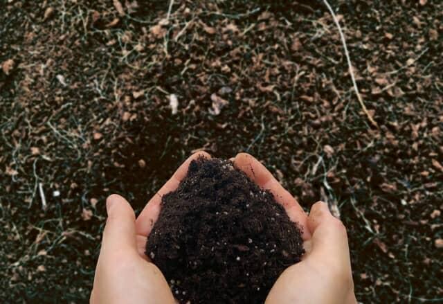 手ですくった土