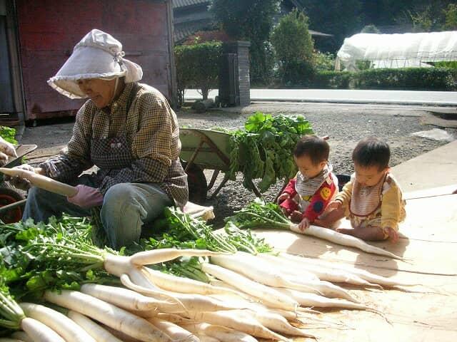 農作業をするおばあちゃんと赤ちゃん