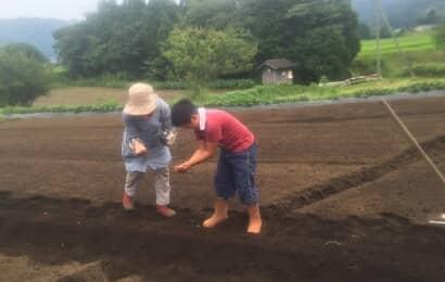 種まきをする少年とおばあちゃん