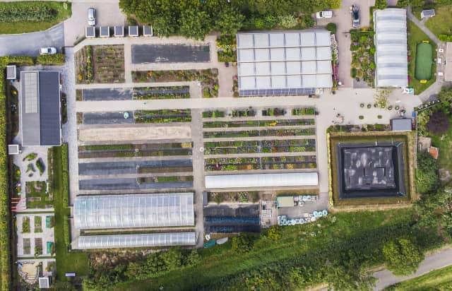オランダ農福連携