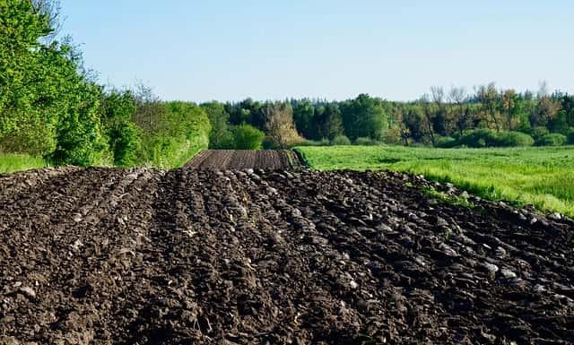 外国の広い耕地