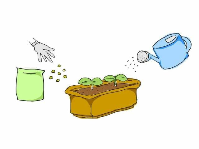 家庭菜園 肥料