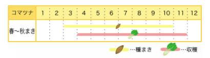 コマツナのプランター栽培カレンダー