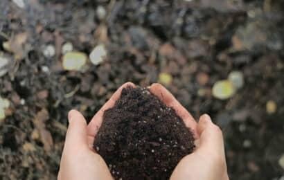 堆肥をすくう手