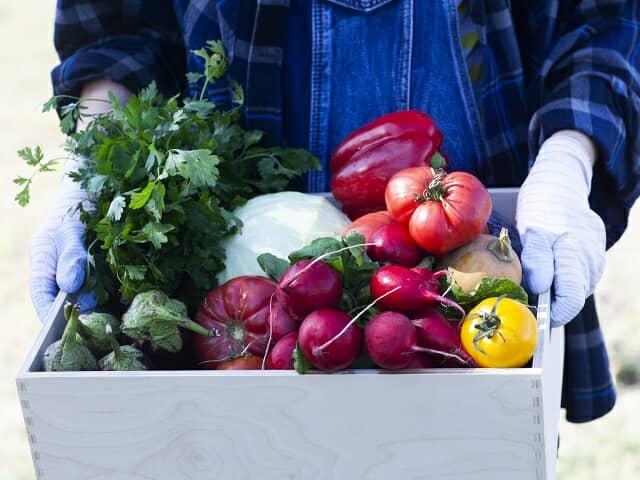 野菜の箱を持つ手