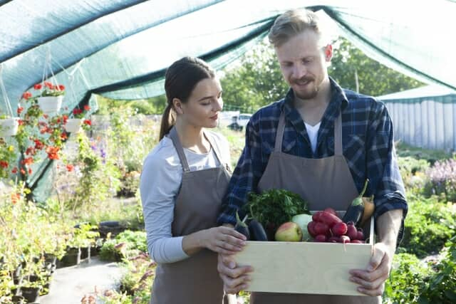 野菜の箱を持つ男女