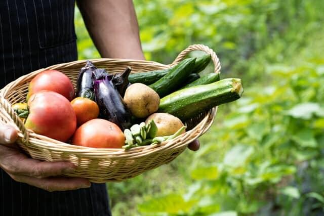 野菜を持つ男性