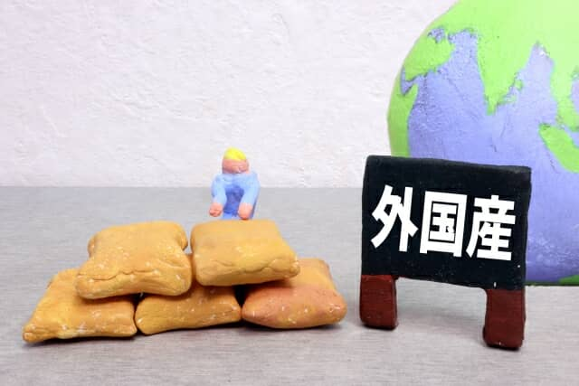 外国産の食料を示す粘土細工
