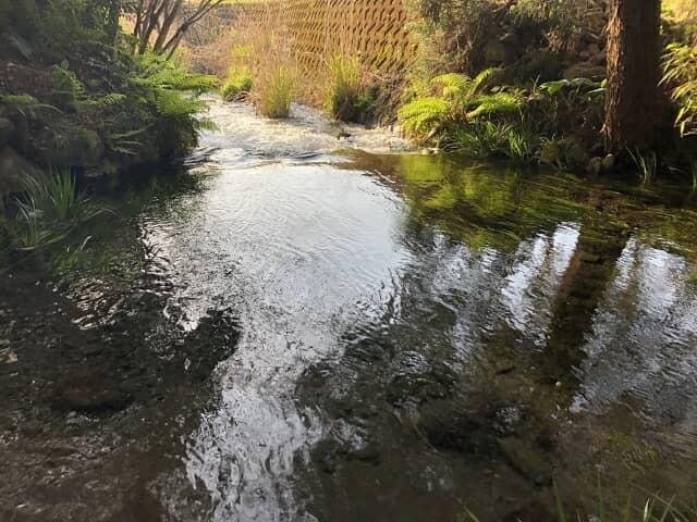 白水村の湧き水