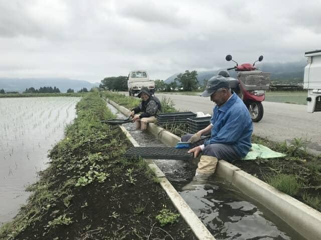 用水路で作業をする人々