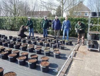 オランダの農福連携