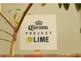 コロナビール「プロジェクトライム」