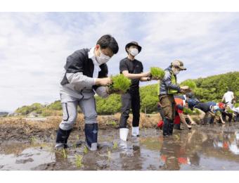 アイリスオーヤマ福島県浪江町にて田植えを実施