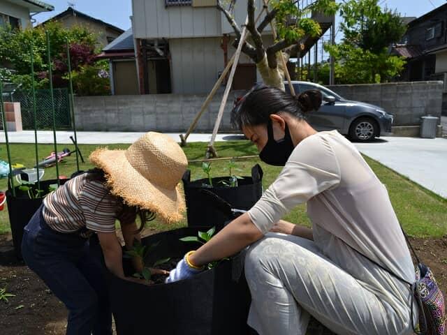 苗を植える親子