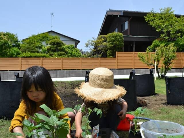 庭にいる二人の女の子