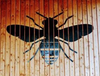 ハチのイメージ