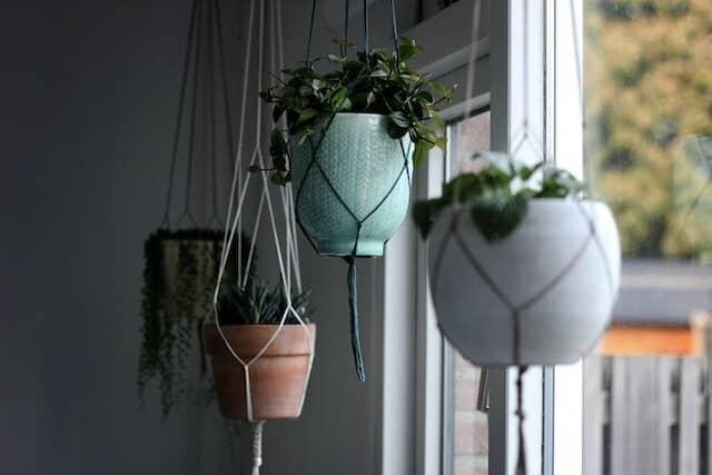 空中の植木鉢