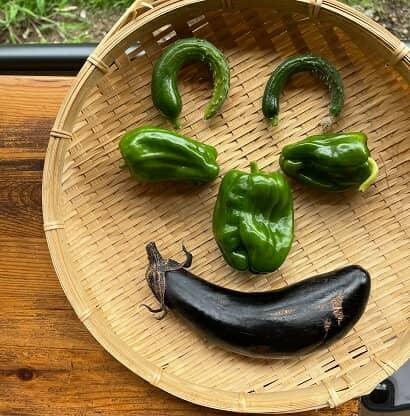 顔の形に置かれた野菜