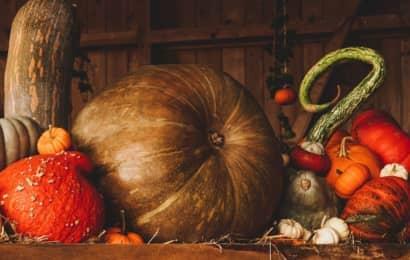 かぼちゃの種
