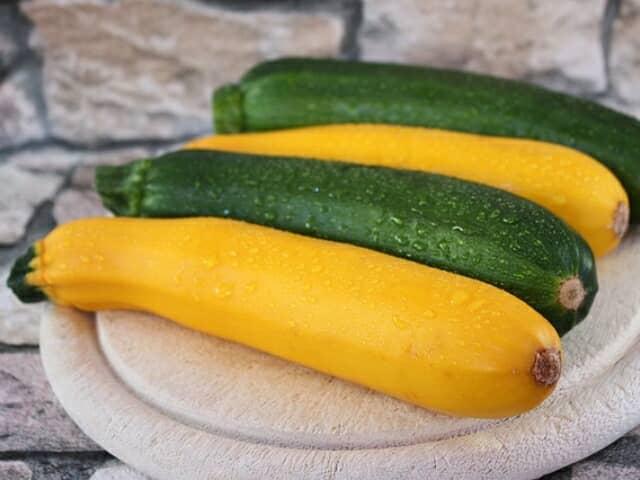 ズッキーニのプランター栽培にチャレンジしよう!支柱立て・人工授粉など家庭菜園でできる育て方のコツ