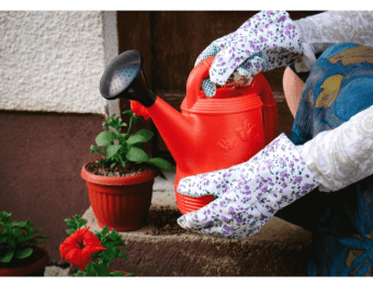 2021年女性が選ぶ「液体肥料」のランキングが発表!