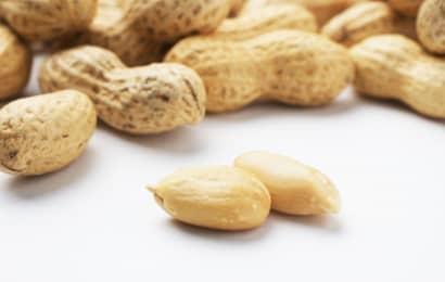 落花生とピーナッツ