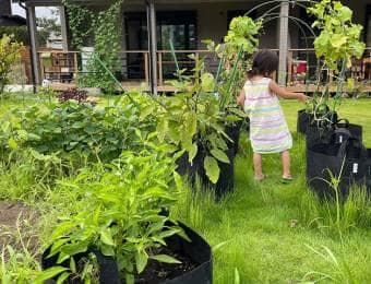菜園にいる子ども