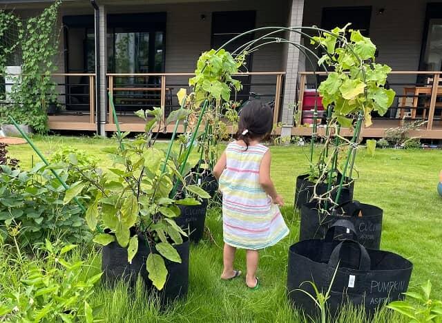 庭にいる子ども