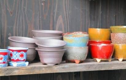 さまざまな植木鉢