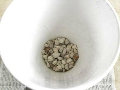 鉢底石を敷く