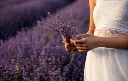 lavender weddding