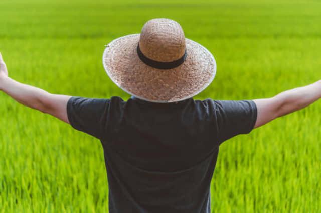 新規就農者