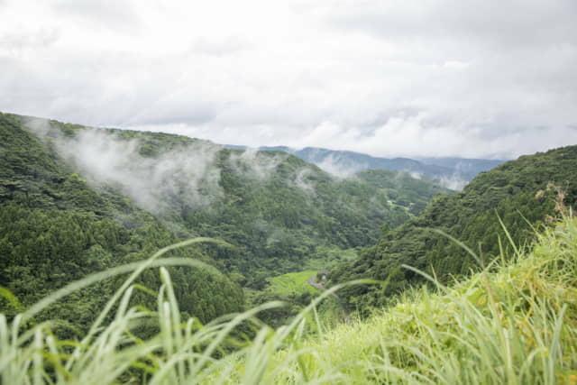 雨上がりの山間地